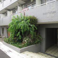 クレセール笹塚